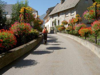 Wandeling Le Chazeau