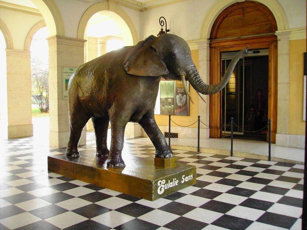 museum Grenoble